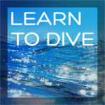 Learn to Dive featured image