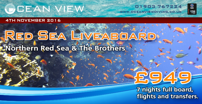Red Sea Liveaboard November 2016