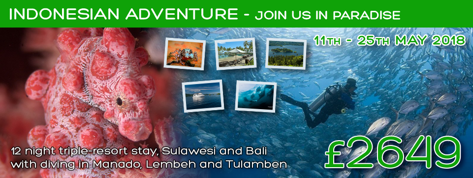 Ocean View Indonesian Holiday Adventure 2018