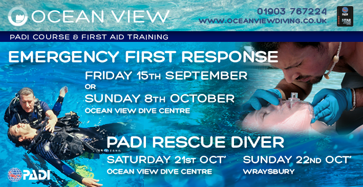 Rescue and two EFR courses