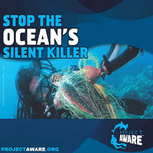 Project Aware Ocean Killer poster