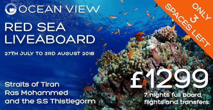 Red Sea 2018 update