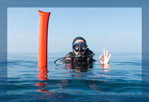 SMB Diver