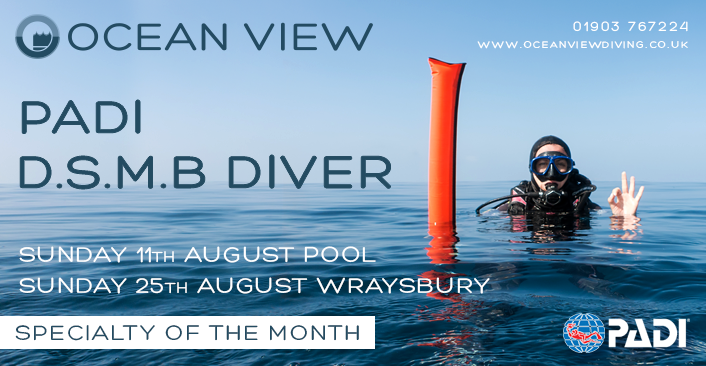 DSMB Diver August 2019
