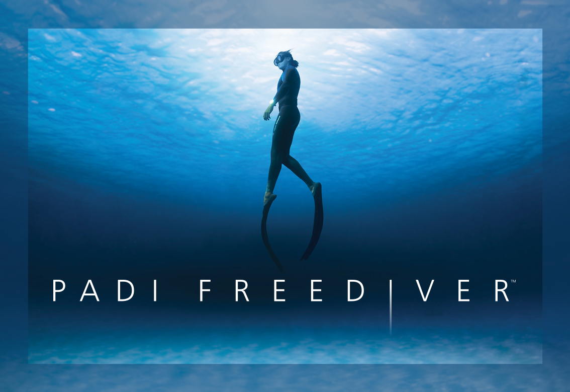 Freediver with logo