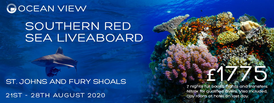 Red Sea 2020 update Nov 2019