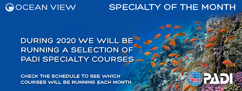 Specialty Courses 2020