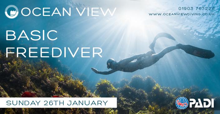 Basic Freediver January 2020
