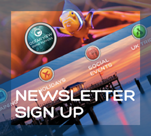 Newsletter sign up front page