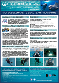 Bubblemaker Seal Team Brochure cover