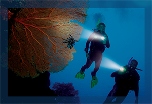 PADI Specialty Courses Deep Diver