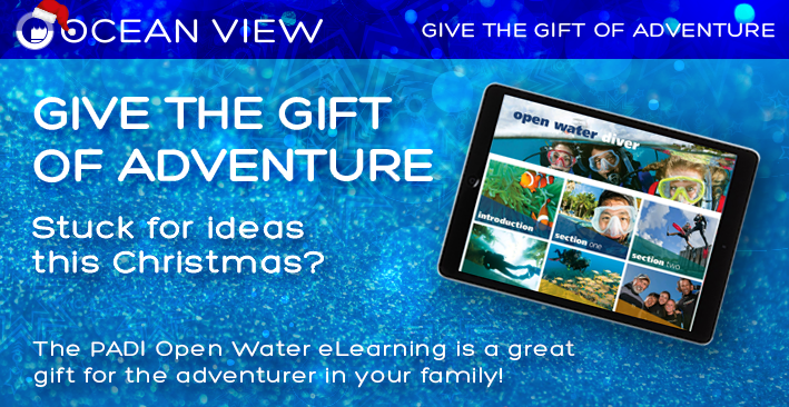 Christmas 2018 Gift Ideas eLearning