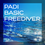 basic Freediver title box