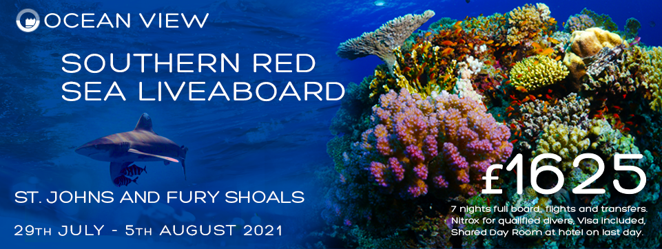 Red Sea Liveaboard 29th July 2021