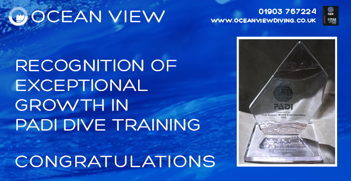 Dive Club Newsletter 2019 Certification Growth