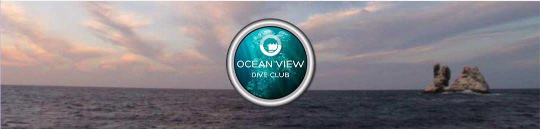 Dive Club Newsletter Header February 2020