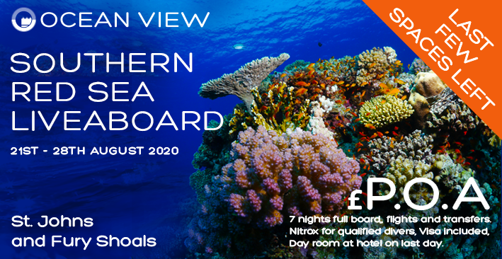 Red Sea 2020 last few spaces