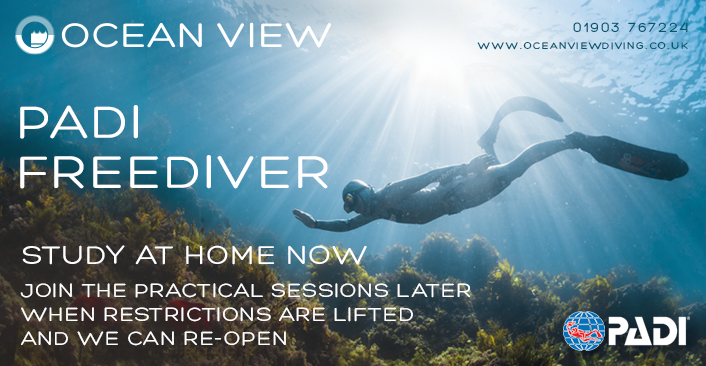 Home eLearning Study PADI Freediver