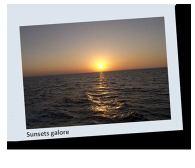 Ocean View Red Sea Liveaboard Polaroid 7