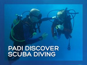Discover Scuba Diver titles