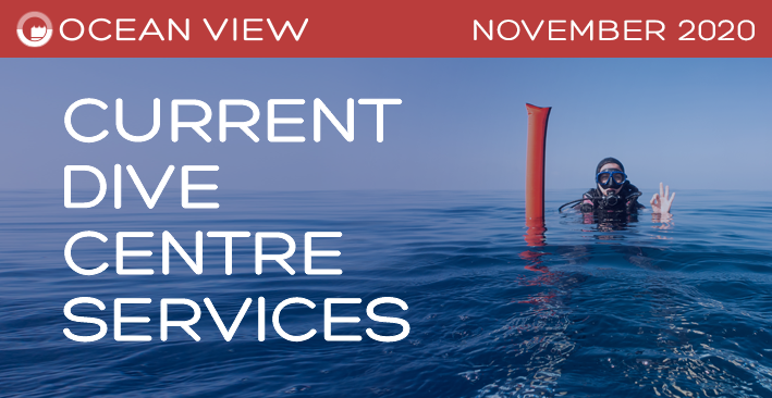 Dive Centre November 2020 Update