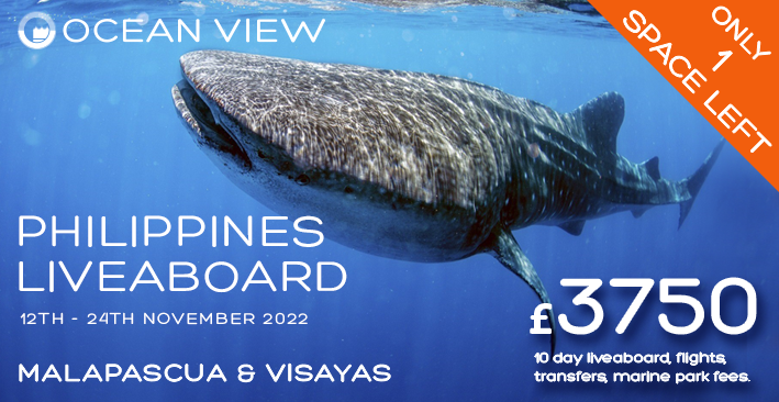 Philippines 2022